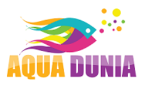 Aquadunia