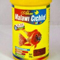 AHM Malawi cichlids color