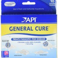 API Powder General Cure 10Ct