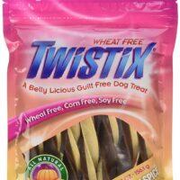 Twistix Dog Treats Pumpkin Spice Flavor Large